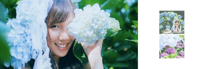 艾琳繡球花_4